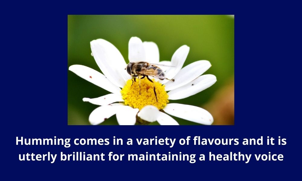 There is an exercise called 'the humming bee'  ideal for calming and focusing the mind